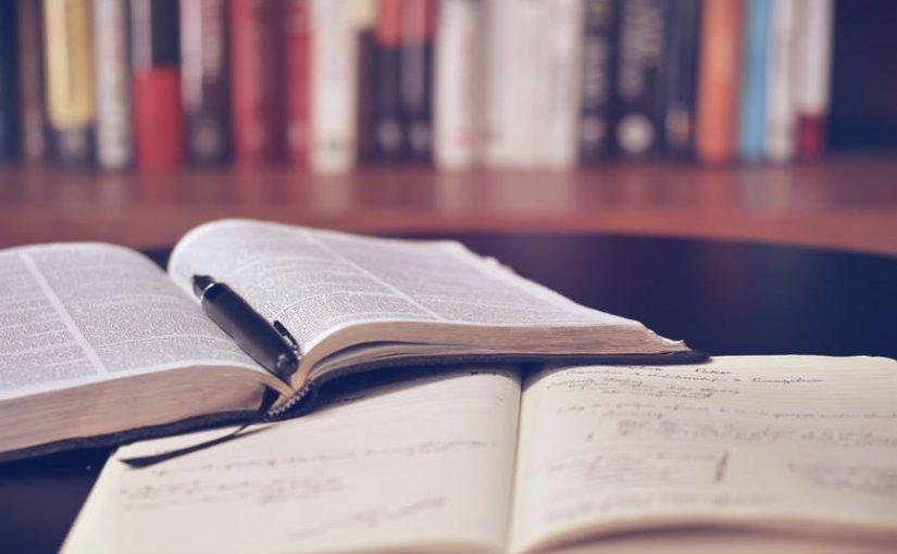 Is externe professionele hulp gewenst tijdens het schrijven van de scriptie?